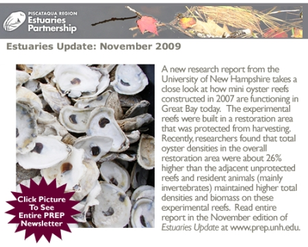 Estuaries Update - November 2009