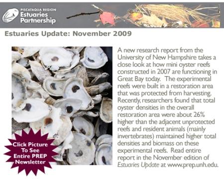 Estuaries Update - November 2009